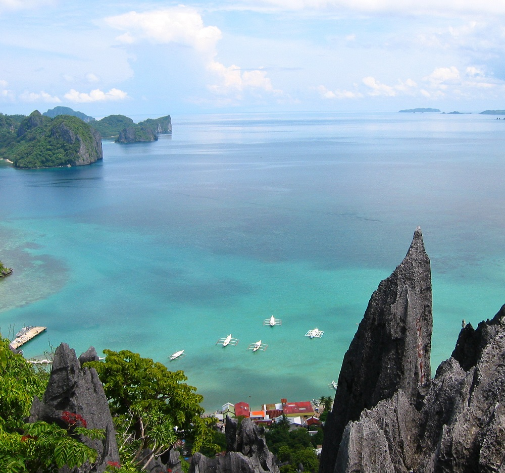 """<h1>1M Hectares of MPA Declared: Palawan</h1> <p>Another marine conservation milestone has been achieved</p> <p style=""""text-align: right;""""><a href=""""https://wwf.org.ph/resource-center/story-archives/one-million-mpa-palawan/"""">Read More ></a></p>"""